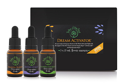 Dream Activator Flower Essence Kit, consisting of the flower remedies Dragon Slayer, Destiny Calls and Manifestation Mojo